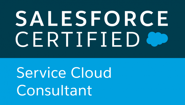 Service Cloud Consultant Badge